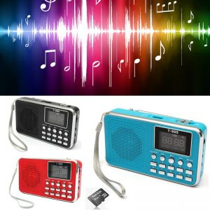 Mini Portable Stereo Radio Micro Card Slot Music Player