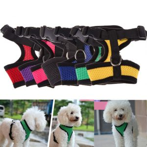 Soft Nylon Adjustable Collar Dog Chest Strap Leash